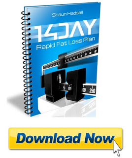 14 Day Rapid Fat Loss Plan review